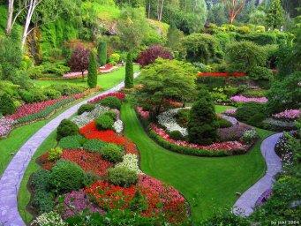 Красочное оформление газона